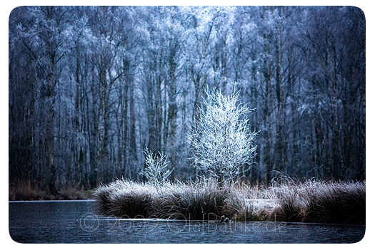 kaelte-fotograf-kiel-blog