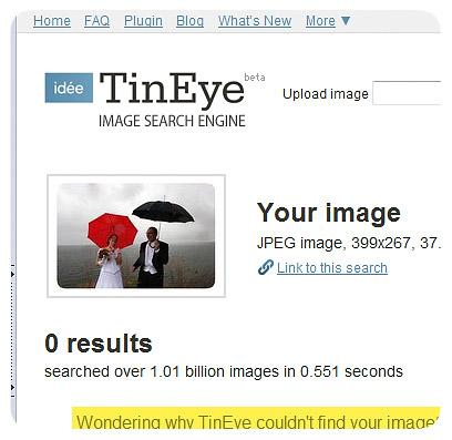 tineye-2