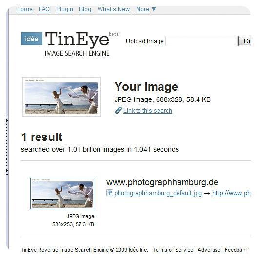 tineye-3